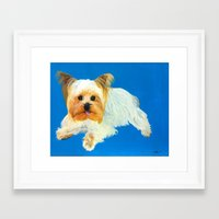 yorkie Framed Art Prints featuring Yorkie by Kelsey Lopez