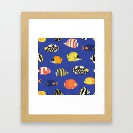 Exotic School Of Reef Fish Framed Art Print