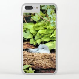 Nestling Shearwater Chick in Kauai by Reay of Light Clear iPhone Case
