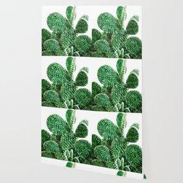 Velvet Cactus Wallpaper