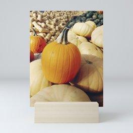 Freshly picked assortment of fall pumpkins and squash Mini Art Print