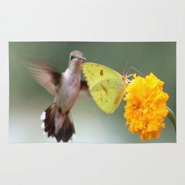 Nectar Queue Rug