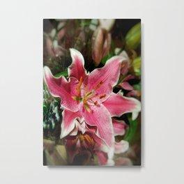 Stargazer Lily DPSS171018a Metal Print