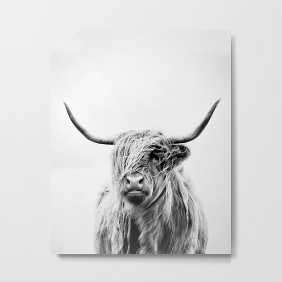 portrait of a highland cow - vertical orientation Metal Print