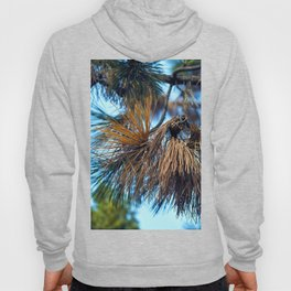 Whispering Pines in the Autumn Light Hoody