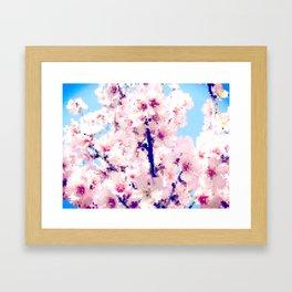 Almond Blossom IV Framed Art Print