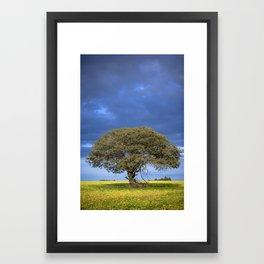 Great Tree Framed Art Print