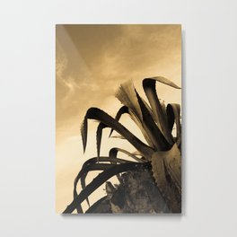 Giant Sepia Aloe Cactus Plant Photograph Art Print Metal Print