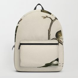 Hen Harrier male (Circus cyaneus) illustrated by the von Wright brothers Backpack