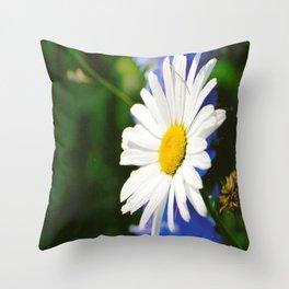 White Daisy Flower Loves Me Loves Me Not Throw Pillow