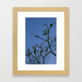 stem silhouette Framed Art Print