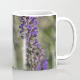 Longwood Gardens - Spring Series 144 Coffee Mug