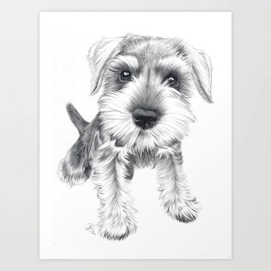 Schnozz the Schnauzer Art Print