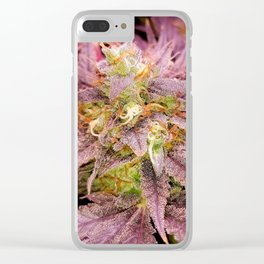 Passionately Purple Clear iPhone Case