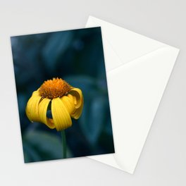 Shy and Scared Stationery Cards