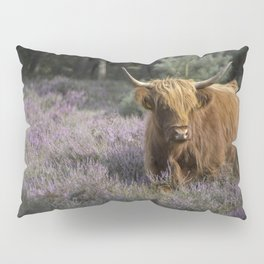 Red highland cow in purple field Pillow Sham