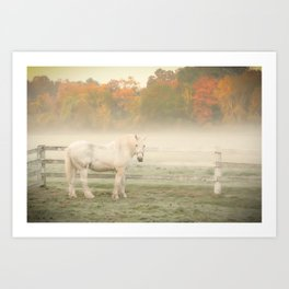 A Horse With No Name Art Print