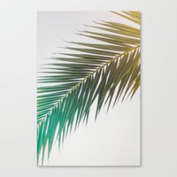 palm tree Canvas Prints featuring palm tree by iulia pironea