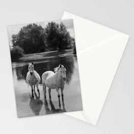 Equine Tranquility Stationery Cards