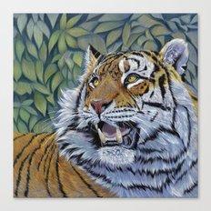 Tiger 807 Canvas Print