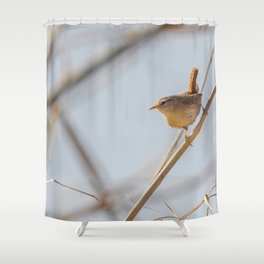 Wren bird on a branch (Troglodytes troglodytes) Wildlife. Eurasian wren Shower Curtain
