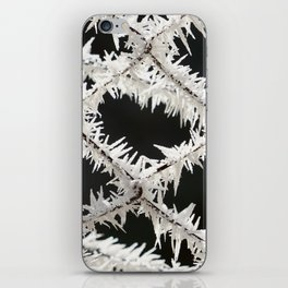 Frosted Fence iPhone Skin