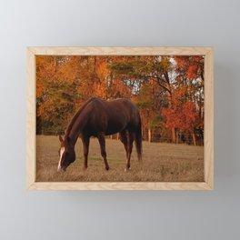 Horse Fall Days of Grazing Framed Mini Art Print