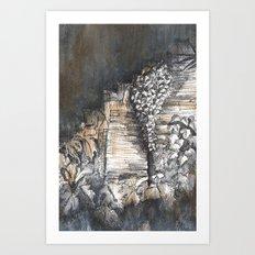 Stairway, Summerhill Glen. Art Print