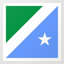 flag of mato grosso do sul Art Print
