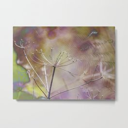 Spiderweb :: Come Hither Metal Print