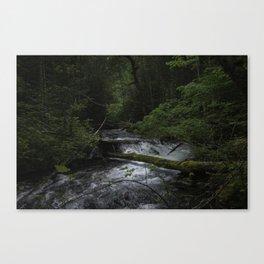 Solitude in Oregon Canvas Print