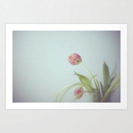 Tulips life Art Print