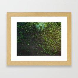 Chia-Like, I Shall Grow Framed Art Print