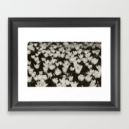 Field of white butterflies  Framed Art Print