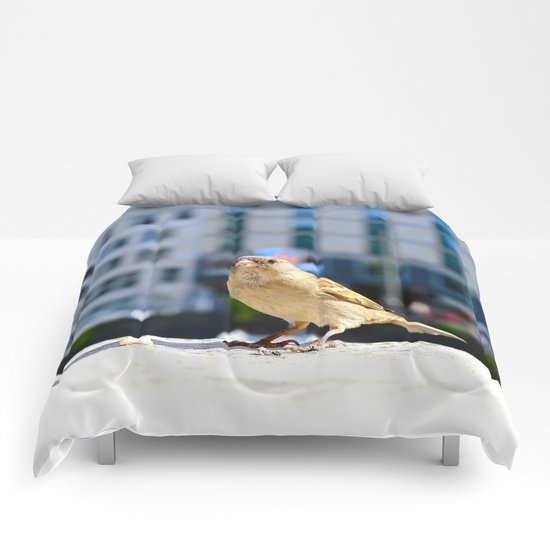 City Bird  Comforters