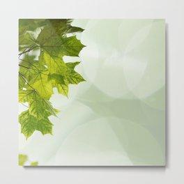 Green leaves frame Metal Print