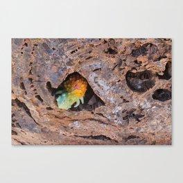 Scaley Lumpcrawler Canvas Print