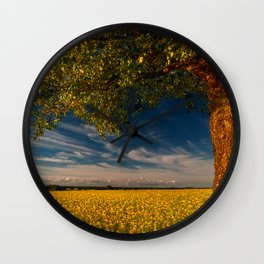 Wonderful springfields with beautiful sky - Rape Wall Clock