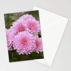 Pink Chrysanthemums Stationery Cards