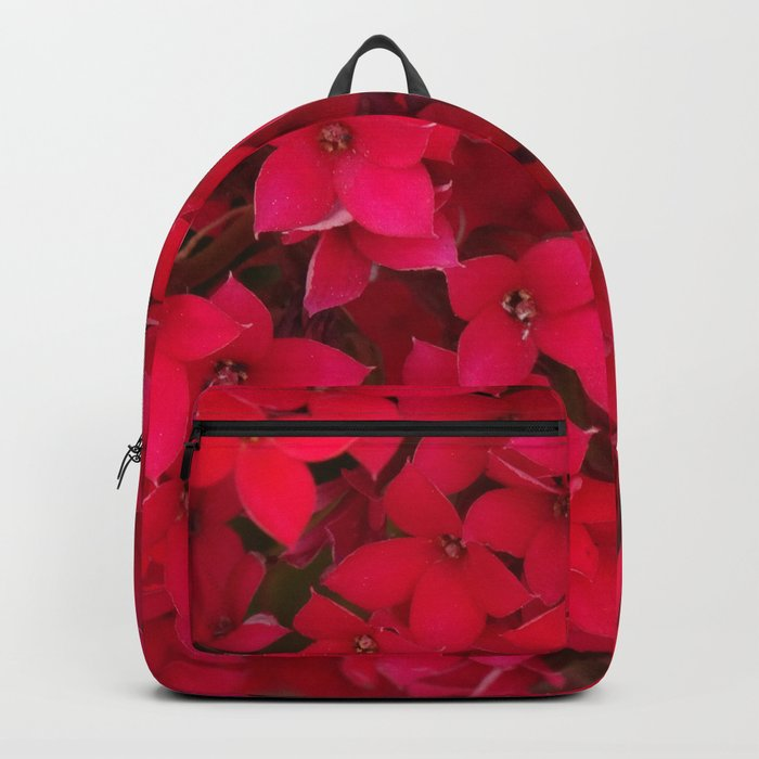 Loving Friends Backpack