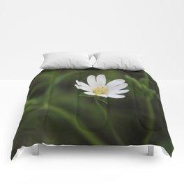 Seen But Not Heard Comforters