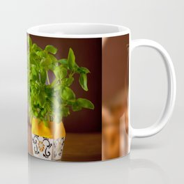 Ocimum basil plant in decorative flowerpot Coffee Mug