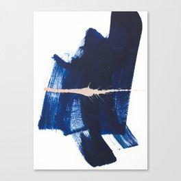 brush strokes 4 Canvas Print