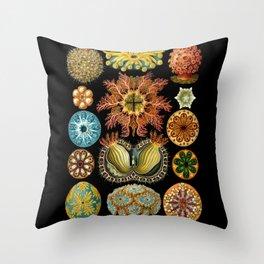 Ernst Haeckel - Scientific Illustration - Ascidiae Throw Pillow