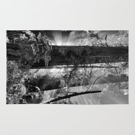 Old Growth Forest Light Black and White Rug