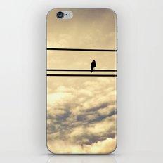 Awakening iPhone & iPod Skin