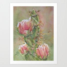 Desert Cactus Flowers Art Print
