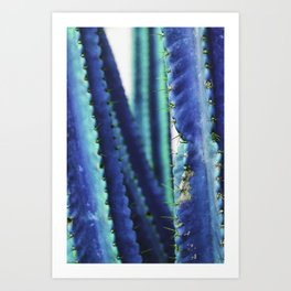 Cactus cuddles Art Print