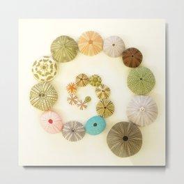 Urchin Swirl... Metal Print