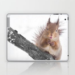 Little squirrel - smack! Laptop & iPad Skin
